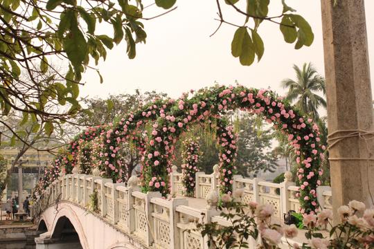 Vòm hoa giả tại Lễ hội hoa hồng - Ảnh: Thành Đạt