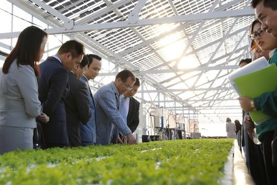 FLC - Farmdo bắt tay làm nông nghiệp - Ảnh 2.