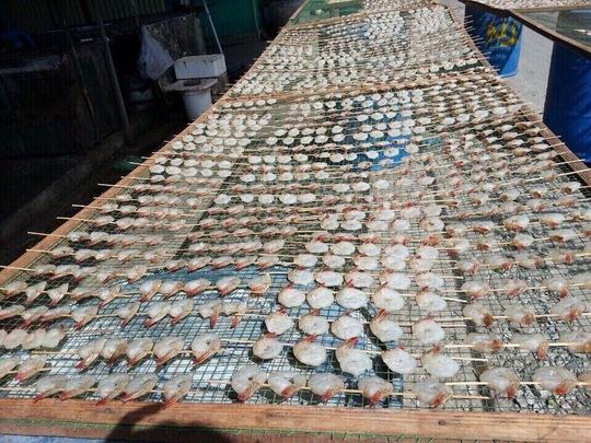 Tôm ép phơi khô là đặc sản được ưa chuộng tại Cà Mau