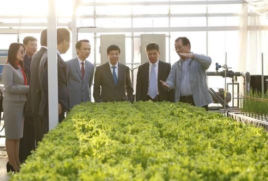 FLC - Farmdo bắt tay làm nông nghiệp - Ảnh 3.