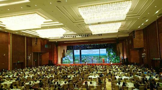 1.000 khách dự lễ công bố quy hoạch khu vực phát triển mới của Quy Nhơn - Ảnh 3.