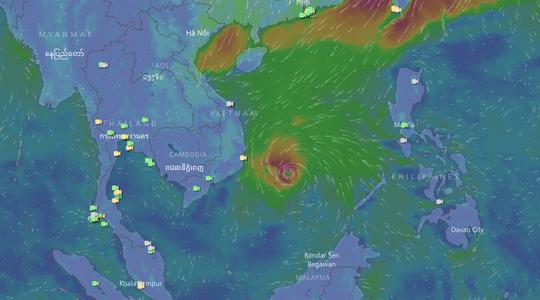 Bão số 14 gây mưa to gió lớn ở TP HCM - Ảnh 9.
