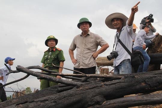 Vụ phá rừng ở Quảng Nam: Bắt một người, điều tra kẻ chủ mưu - Ảnh 1.