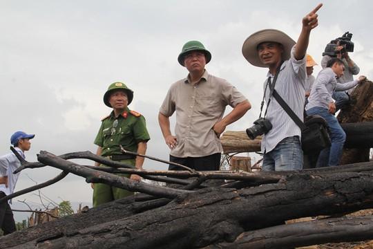 Để xảy ra phá rừng, chủ tịch xã mất chức - Ảnh 1.