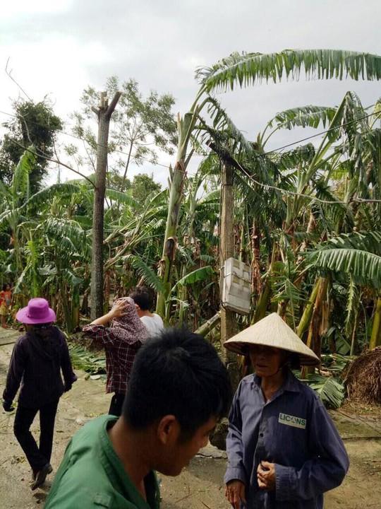 Trưởng thôn tử vong lúc phát quang cây cối sau bão số 10 - Ảnh 1.