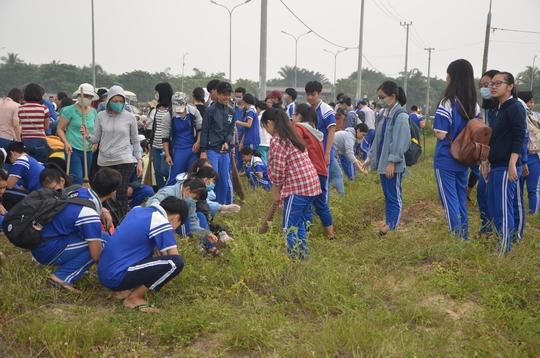 Chủ tịch Đà Nẵng cùng 3.000 người dân làm sạch môi trường đón APEC - Ảnh 5.
