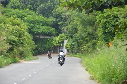 Chính thức thanh tra toàn diện Sơn Trà và Khu đô thị quốc tế Đa Phước - Ảnh 6.