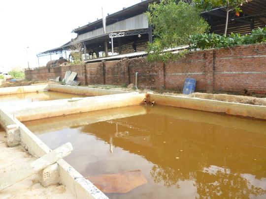 Bãi chứa nước thải của nhà máy kẽm có đường ống dẫn nước thải ra mương nước nằm ngoài nhà máy