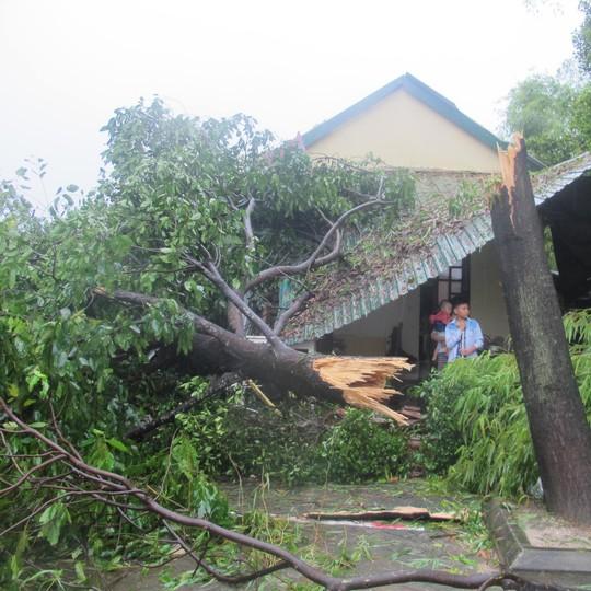 Bão số 10: Cuồng phong quét qua, nhà tốc mái, cây đổ la liệt - Ảnh 34.