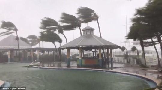 Bão Irma đổ bộ vào bang Florida - Ảnh 3.