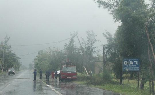 Bão số 10: Cuồng phong quét qua, nhà tốc mái, cây đổ la liệt - Ảnh 22.