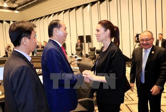Chủ tịch nước: Thông qua Tuyên bố Đà Nẵng tại APEC 2017 - Ảnh 23.