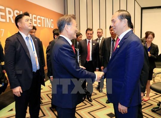 Chủ tịch nước: Thông qua Tuyên bố Đà Nẵng tại APEC 2017 - Ảnh 22.