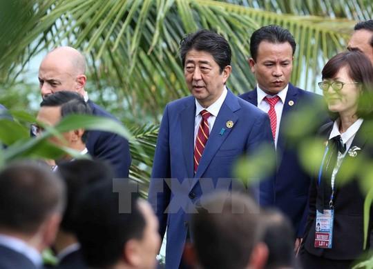 Chủ tịch nước: Thông qua Tuyên bố Đà Nẵng tại APEC 2017 - Ảnh 26.