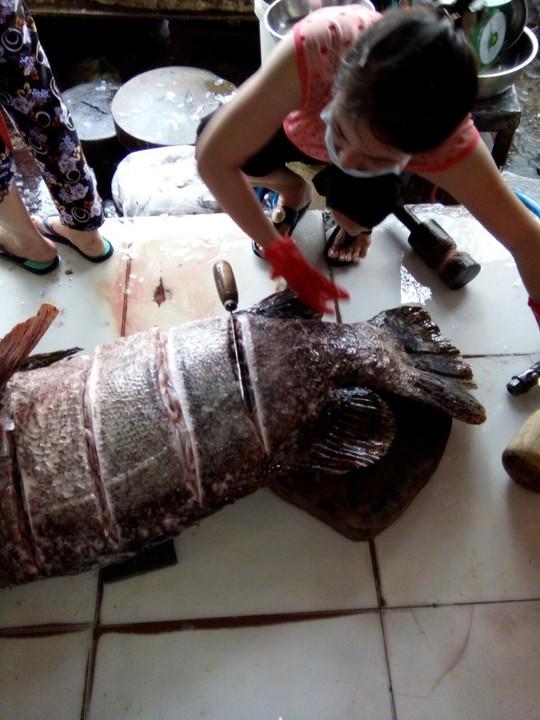 """Bắt được cá mú """"khủng"""" nặng 55 kg ở Phú Quốc - Ảnh 2."""
