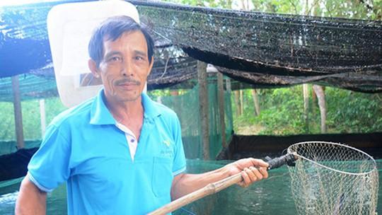 Lãi cao từ nuôi cá lóc trong ao lót bạt - Ảnh 1.