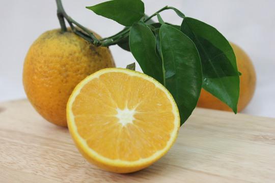 8 loại cam ngon nhất Việt Nam