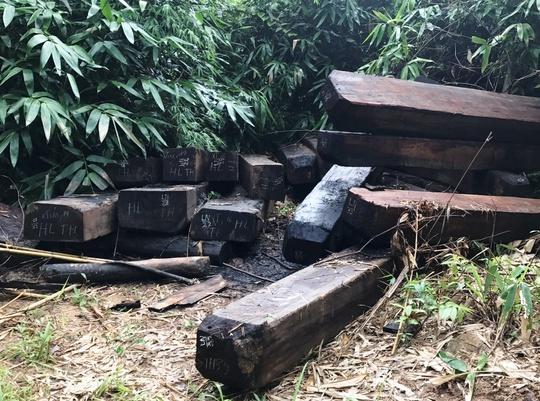 Vụ gỗ trái phép vứt đầy đường biên: Đốt gỗ tang vật để phi tang - Ảnh 1.