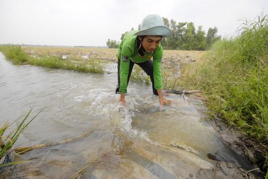 Cuộc chiến nước trên sông Mê Kông - Ảnh 1.