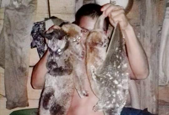 Thú rừng bị săn bắn ở huyện Đạ Tẻh, tỉnh Lâm Đồng Ảnh: GIA HƯNG