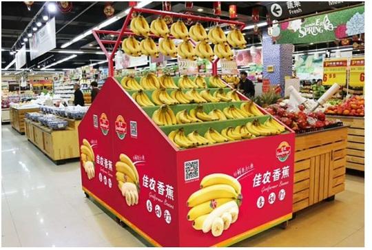 Bầu Đức xuất khẩu hàng ngàn tấn chuối sang Trung Quốc - Ảnh 1.