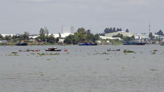 Hàng chục chiếc ghe dùng xung điện bắt cá trên một đoạn sông