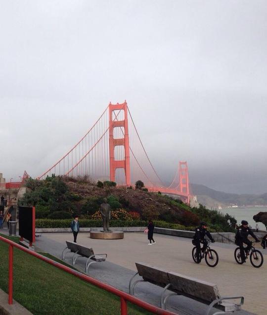 Cầu Cổng Vàng nhìn từ một công viên gần đó