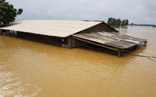 Hà Nội: Vỡ đê sông Bùi, nước ngập gần nóc nhà - Ảnh 2.