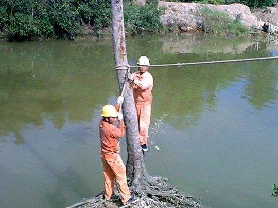 Bảo vệ lưới điện mùa mưa bão - Ảnh 2.