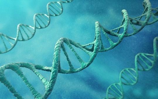 Đồng tính luyến ái do... gene - Ảnh 1.