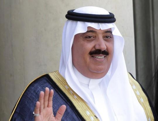 Ả Rập Saudi bắt giữ 11 hoàng tử - Ảnh 1.