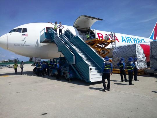 Hàng viện trợ của ASEAN đến với nạn nhân bão số 12 - Ảnh 1.
