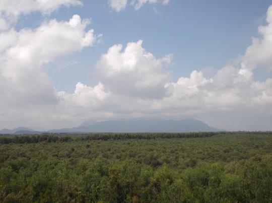 Lung linh mùa nước nổi ở An Giang - Ảnh 7.