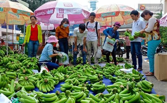 Chiến dịch giải cứu chuối Đồng Nai sau khi Trung Quốc ngưng thu mua