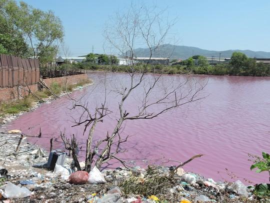 Hồ nước rộng 10ha biến thành màu tím