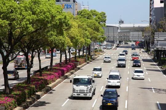 Mua ô tô tại Nhật có dễ?