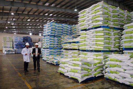 Các doanh nghiệp thức ăn chăn nuôi tranh thủ nhập khẩu nguyên liệu khi giá thế giới ở mức thấp - Ảnh: Hữu Thuận