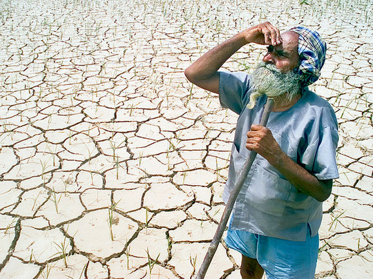 Hiện tượng El Nino có thể tái xuất trong năm nay Ảnh: BUSINESS STANDARD