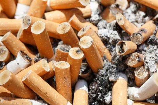 Chết người như chơi vì đầu lọc thuốc lá - Ảnh 1.