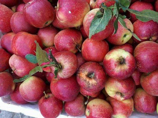 6 loại trái cây Trung Quốc đang tràn ngập chợ Việt Nam - Ảnh 2.