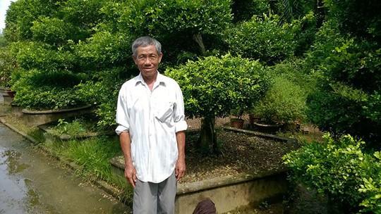 Tỉ phú cây kiểng ở làng hoa Phó Thọ - Bà Bộ - Ảnh 1.