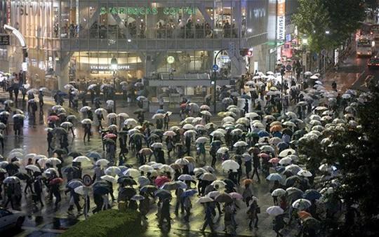 Vì sao người Nhật thích dùng ô trong suốt? - Ảnh 4.