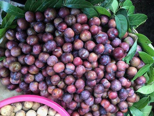 6 loại trái cây Trung Quốc đang tràn ngập chợ Việt Nam - Ảnh 4.