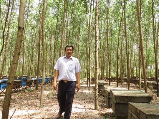 Ngưỡng mộ người nông dân lái ô tô thăm rừng mình trồng - Ảnh 1.