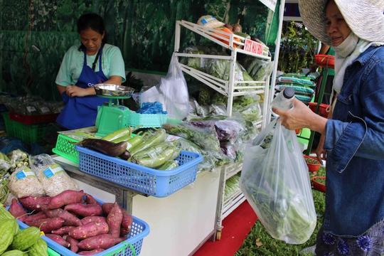 Nghe được tin có hội chợ nông sản, cô Phú (ngụ Phạm Văn Hai, quận Tân Bình) có mặt rất sớm để mua được rau sạch tại hội chợ.