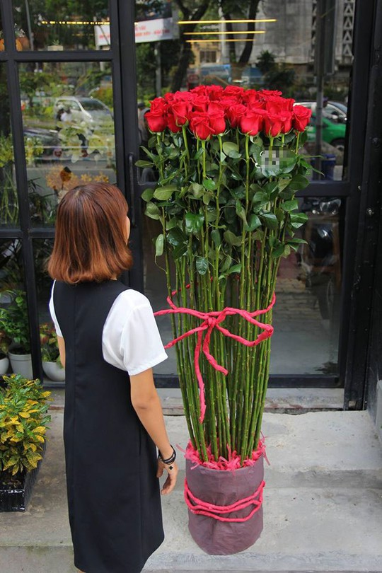Hồng đỏ nhập trực tiếp từ Ecuador, dài 1,5m thậm chí đến gần 2m giá 500.000 đồng/bông đang được các đấng mày râu săn mua dịp Valentine.
