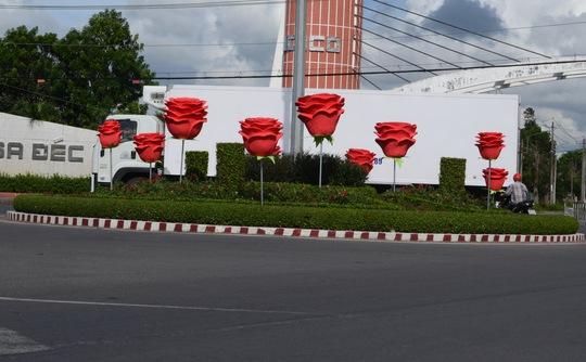 Hoa hồng khủng tại vòng xoay đường vào Làng hoa Sa Đéc