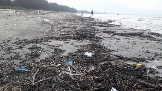 Hơn 1 km bờ biển Đà Nẵng tràn ngập hàng trăm tấn rác - Ảnh 5.