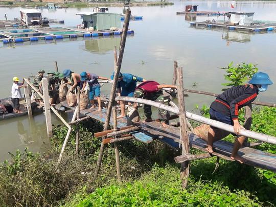 Hơn 80 tấn cá chết trắng trên sông Cổ Cò - Ảnh 3.