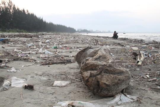 Hơn 1 km bờ biển Đà Nẵng tràn ngập hàng trăm tấn rác - Ảnh 6.